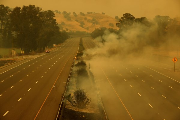 FAIRFIELD, CALIFORNIA - AUGUST 19: Fire burns along the closed Interstate 80 as the LNU Lightning Complex fire burns through the area on August 19, 2020 in Fairfield, California. The LNU Lightning Complex fire is spread over four counties and has burned over 45,000 acres. The out-of-control wildfire has destroyed at least 50 homes and is zero percent contained. (Photo by Justin Sullivan/Getty Images)
